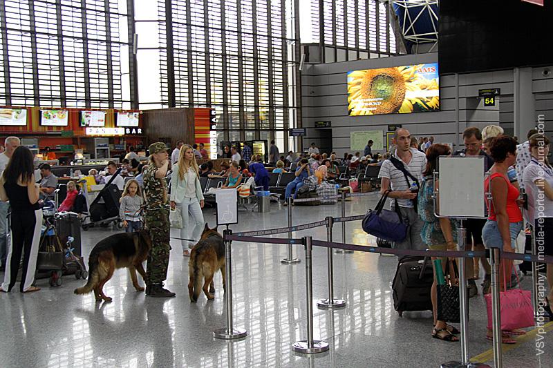 Кинологи недремлют. Олимпийский аэропорт должен охраняться исобаками тоже..