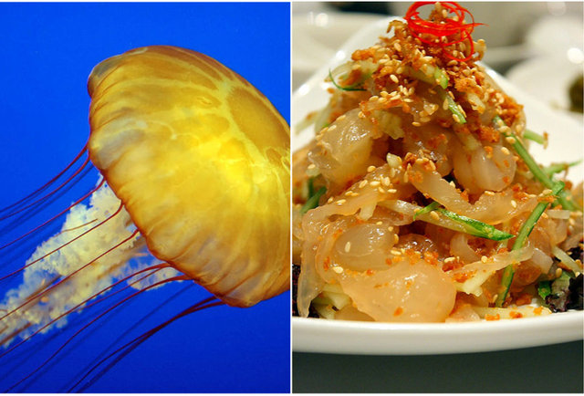 Jellyfish salad-10 meals that will bite you back