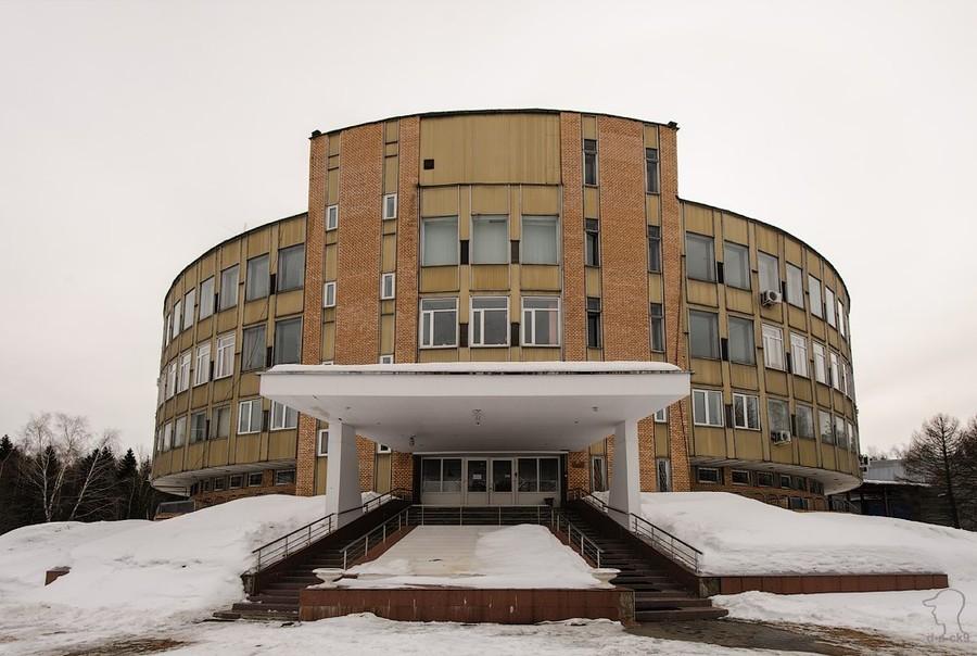 нее звездный городок московская область фото плодовитый белый