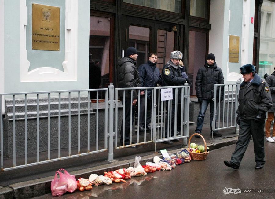 К зданию ЦИК РФактивисты принесли сетки совощами. © Антон Тушин/Ridus.ru