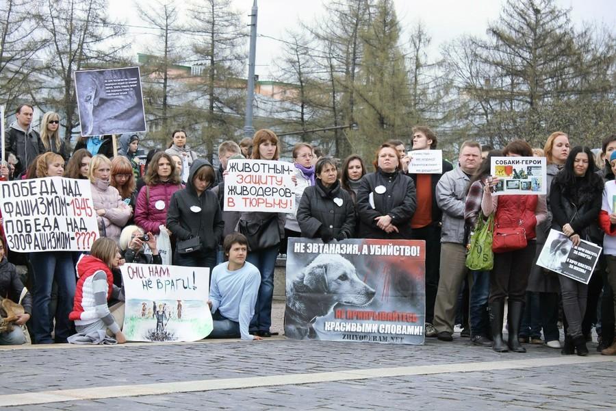 Московское общество защиты животных хотелось исследовать