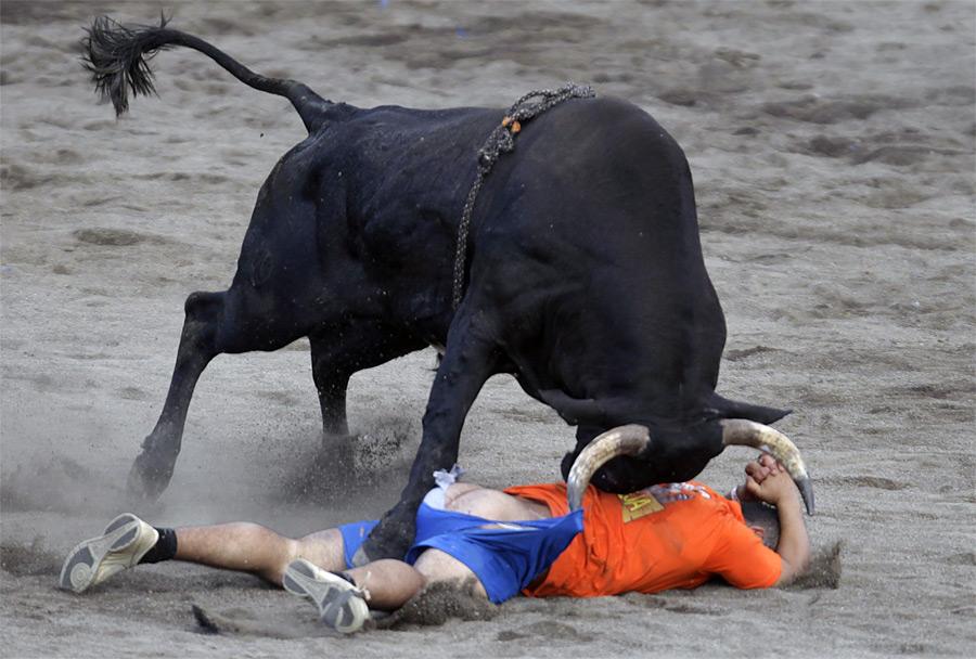 Неудачное выступление одного изболее чем 300 участников ежегодного фестиваля Toros alaTica вСан-Хосе, столице Коста-Рики. © Juan Carlos Ulate/Reuters