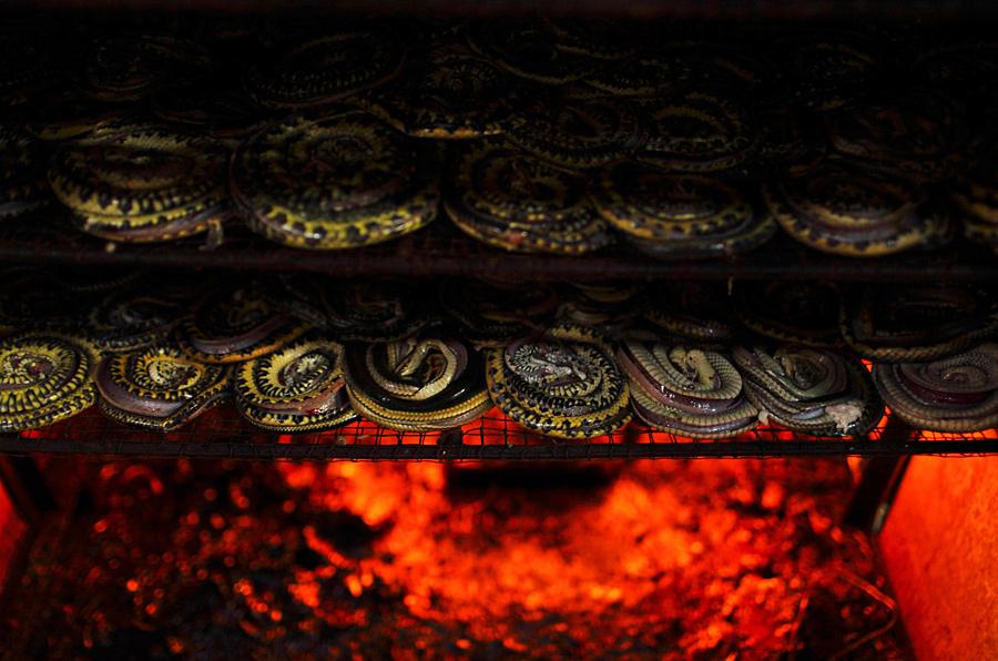 Как шьют сумочки из змеиной кожи