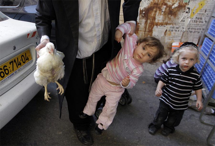 Ортодоксальный еврей несет курицу идочь вовремя ритуала Капарот вИерусалиме. © Ammar Awad/Reuters