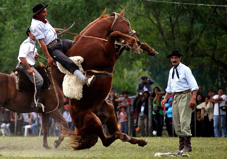 езда на лошади простатит