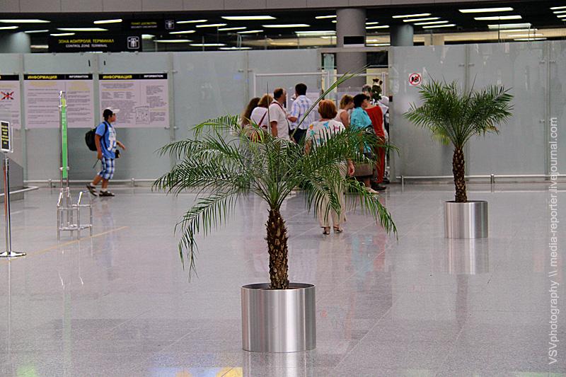 Надеюсь пальмы скоро вырастут, или ихзаменят нановые, большие-высокие. Ато как-то прям не серьёзно.. Хотя, смотрится оригинально.. ))