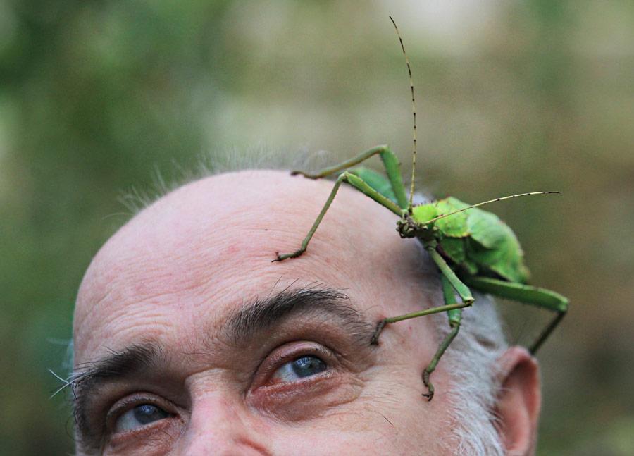 Владелец британского зоопарка Уипснейд ванглийском графстве Бедфордшир вовремя инвентаризации. © Olivia Harris/Reuters