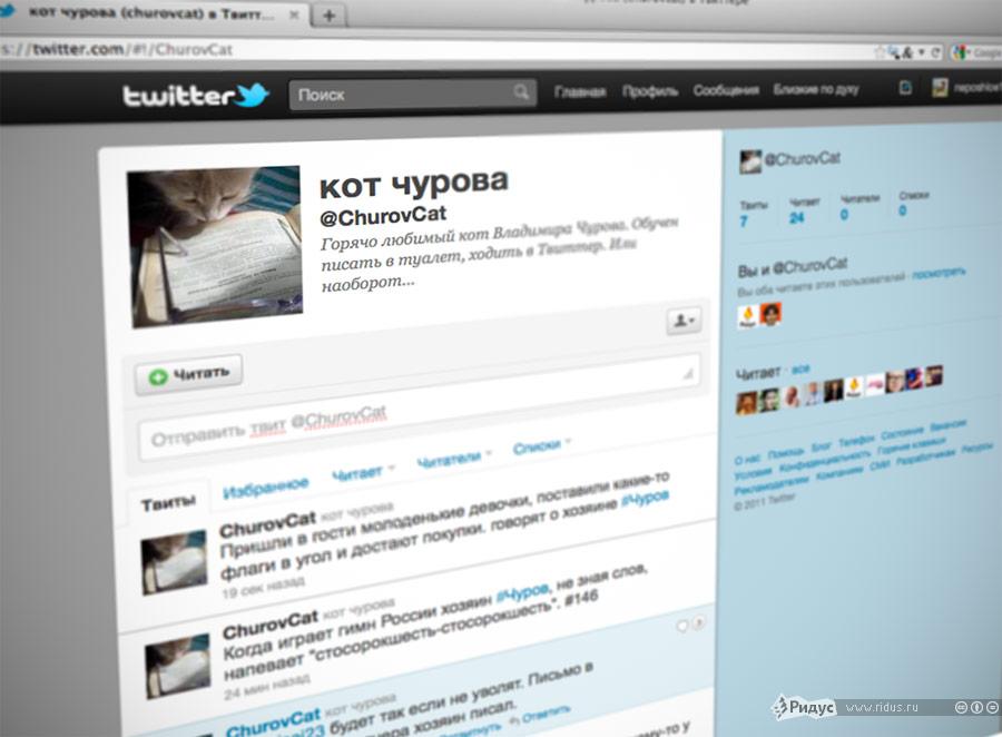 Снимок страницы кота Чурова втвиттере. © Ridus.ru