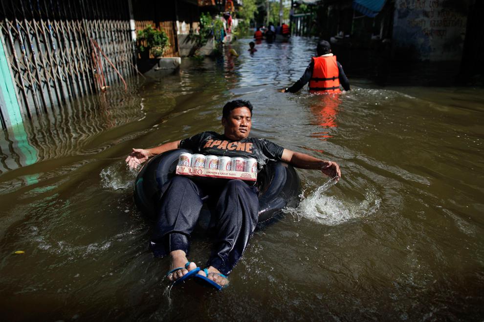 Прикольные картинки про потоп, лошадьми прикольные