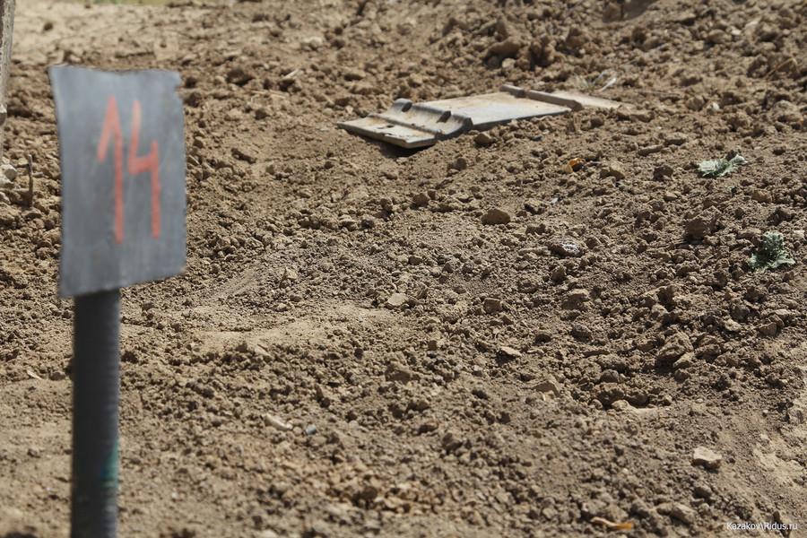 Часть гусеницы наминном поле © Пётр Казаков/Ridus.ru