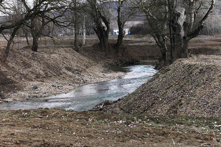 Очищенное русло реки © Никита Перфильев