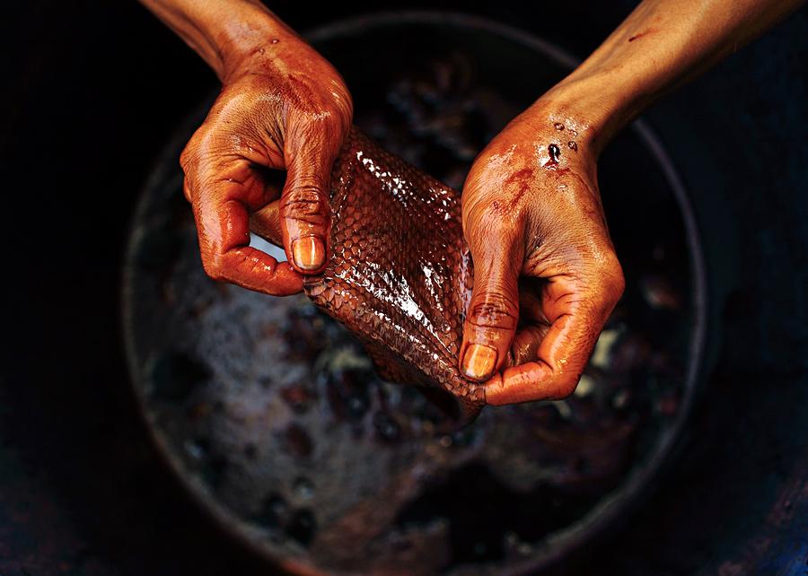 Индонезийский рабочий держит кусок змеиной кожи после окраски на заводе по производству сумок в районе Комал города...