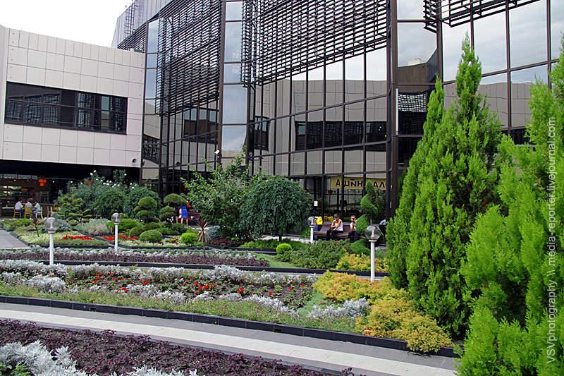 В Олимпийском терминале есть свой зелёный оазис. Свой внутренний дворик. Здесь очень красиво. Советую зайти, полюбоваться... Это иесть тасамая изюминка аэропорта, окоторой ясказал всамом начале.