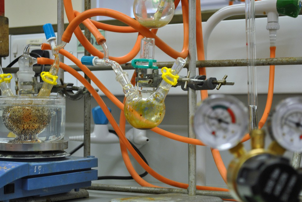biological science research papers Browse 110 science publications on biology and life sciences - laboratory animal research from the national academies press.