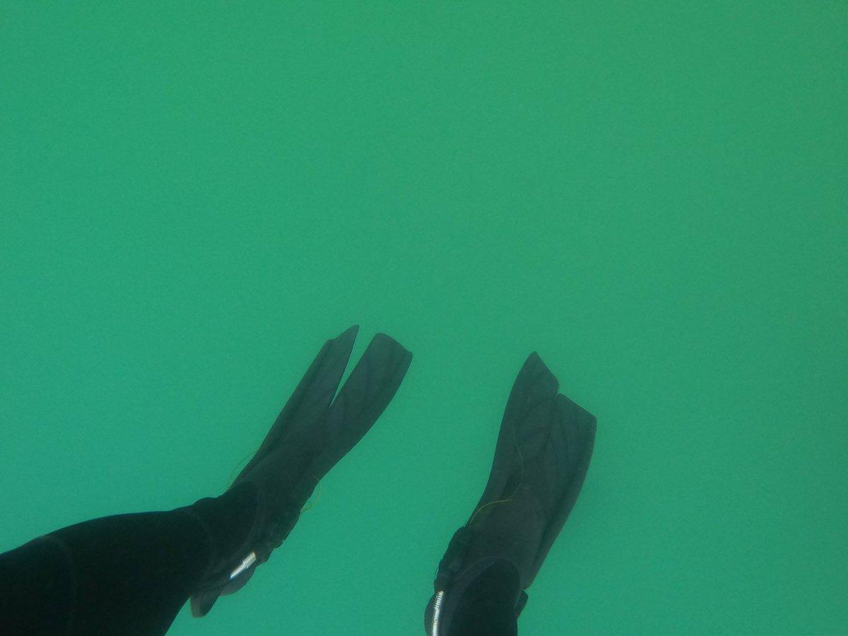 Смогли бы прыгнуть в бездонное зеленое нечто